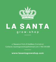 comprar semillas marihuana cantabria la santa grow shop