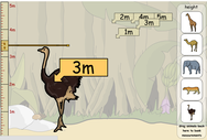 hoogte van de dieren