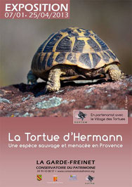Expo Péda Tortue d'Hermann