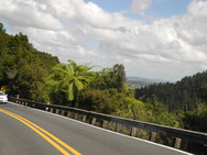 ArohaIsland-Auckland 270km
