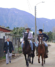 Sector Plazuela