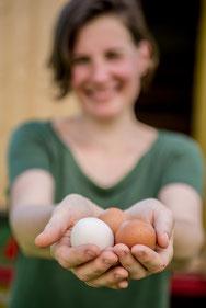 Bildquelle Hofkramerei: Eva Ehmeier mit frischen Bio-Eiern!