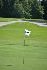 Lochfahnen bedrucken, Lochfahnen, Lochfahne, Golf Lochfahnen, Lochfahne mit Logo, Lochfahne bedrucke, Lochfahne bedrucken, Lochfahnen, Golffahne, lochfahnen golf, Golf Werbemittel, Golffahne bedrucken, Golffahne mit Logo, Golffahne bedruckt, Golffahne