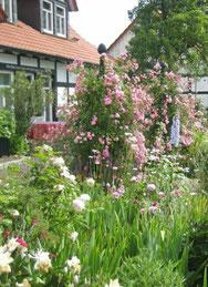 Garten Offene Gaerten Westfalens Webseite
