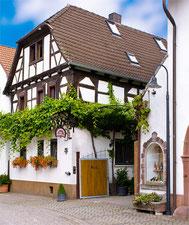 Weingut Paulushof in Venningen