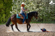 Gelassenheitstraining Pferd, Bodenarbeitsseil, Agility Pferd, Bodenarbeit Kurs, Klappersack, Flatterball