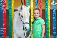 Gelassenheitstraining Pferd, Bodenarbeit, Bodenarbeitsseil, Agility Pferd, Bodenarbeit Kurs, Flattervorhang