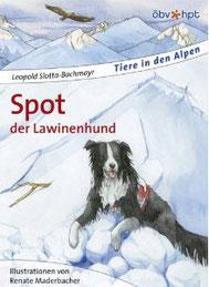 Spot, der Lawinenhund