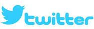 PYGMY,ピグミー,バンド,Twitter,official,最新情報