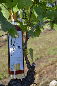 Vin doux rouge et blanc et vins de corrèze