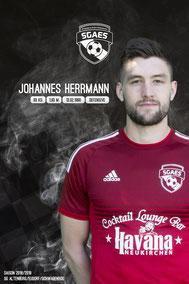 Herrmann, Johannes