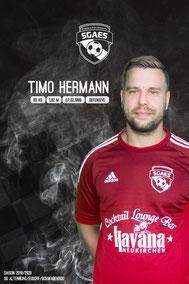 Hermann, Timo