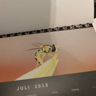 Angerissenes Kalenderblatt