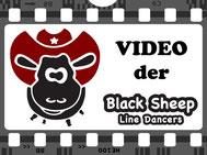 Hier geht's zum Black Sheep Video!