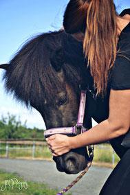 Mobilisierung Halswirbelsäule Pferd