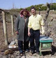 Sélection d'apis syriaca dans le sud Syrien