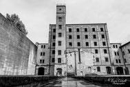 """Impronta Indelebile"" Risiera di San Sabba, Trieste - Venice International Art Fair 2020, The ROOM Contemporary Art Space"