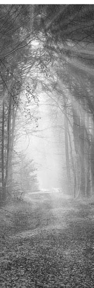 Trauerbegleitung Trauer Tod Verlust Schmerz traurig hoffnungslos allein einsam