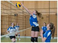 Ballsport, Faustball, Volleyball, Beachvolleyball, Golf