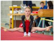 Turnsport, Geräteturnen, Gymnastik