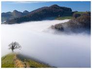 Nebel, Nebliges
