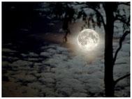 Gestirne, Sonne, Mond, Milchstrasse