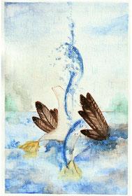 乙樹うた   /   溺れる水鳥