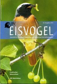 22. Ausgabe, 2010