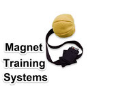 Magnet dog training equipment