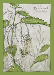 Kräuterkarte, Wildkräuter, Aquarellzeichnung, Brennnessel Urtica dioica,  Elfen, Gnome Feen