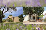 Location Vacances en Vaucluse