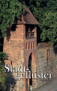 Mein Buch mit der Geschichte vom Vergessenen Roman