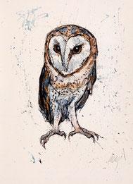 Nr. 1599 Schleiereule