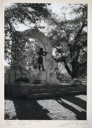 Nr. 3561 Joh. Strauss Denkmal Wien