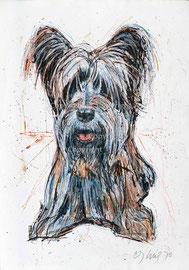 Nr. 3467 Terrier