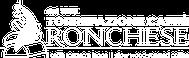 Kaffe aus italien, holzgerösteter Kaffee, ronchese, torrefazione ronchese, hochwertiger Kaffe, qualitativer Kaffee, nespresso, kapseln nespresso, Kaffee, Latte macchiatto, Cappuccino, lungo, espresso, cafe,