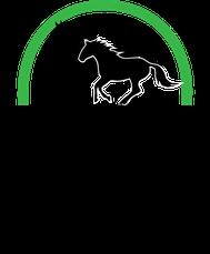 Pferdepension Pensionspferde Brandenburg Berlin Duif