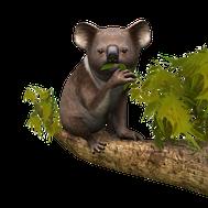 Artwork Meine Tierstation im Outback 3D