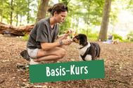 Frau belohnt ihren Hund beim Hundetraining im Basis Kurs