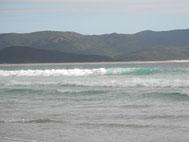 ArohaIsland-Kapowairua 230 km
