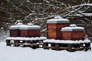 Winter am Bienenstand in Martinsried