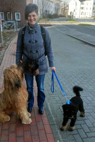 Besuch in Kiel: Andras aufmerksam - Momo neugierig ohne Ende                                                                                      (und Frauchen hätte ne Mütze gebraucht!)