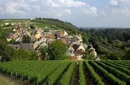 Vignobles de Pouilly sur Loire