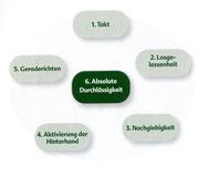 """entnommen aus dem Buch """"Die Westernreitlehre"""" (FN-Verlag)"""