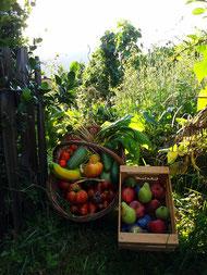Bauerngarten in Südtriol