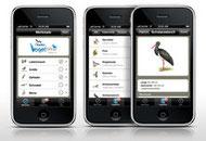 NABU-Vogelführer online und als kostenloses Handy-App