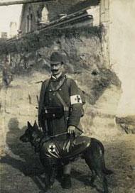 Deutscher Schäferhund als Sanitätshund im 1.Weltkrieg