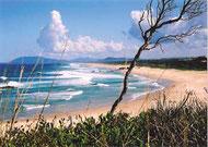 Die schönen Strände des Ferienortes Port Macquairie