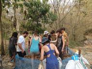 Le composte de feuille morte pour les champignons