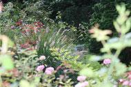 Blühendes Staudenbeet